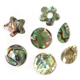 Paua Shell Charms