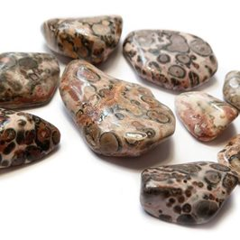 Leopardskin Rhyolite Tumble Polished Gemstones, Small